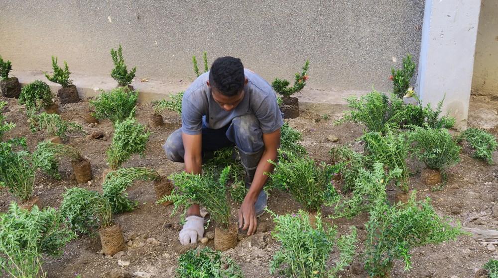 Edgard Raul Leoni Moreno - Jornada de reforestacion de la Fundacion AINCO en Mucuritas