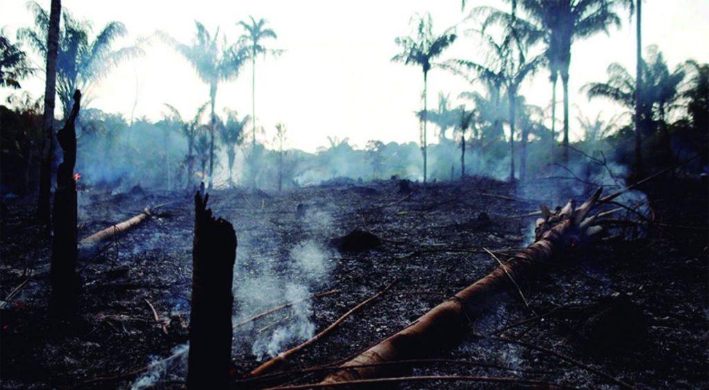 Los incendios que consumen a la selva tropical actualmente podrían acelerar entre 50 o 60% el deterioro de la Amazonía