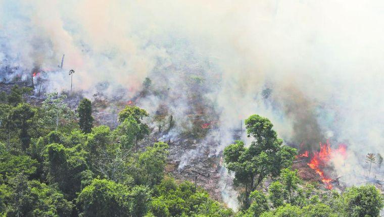El Canciller de la República manifestó que el Gobierno nacional está presto a brindar la ayuda inmediata para detener el incendio